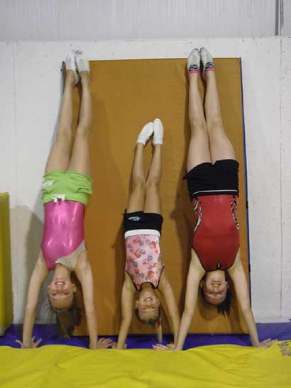 Summer Camp Gymnasts by: Marci